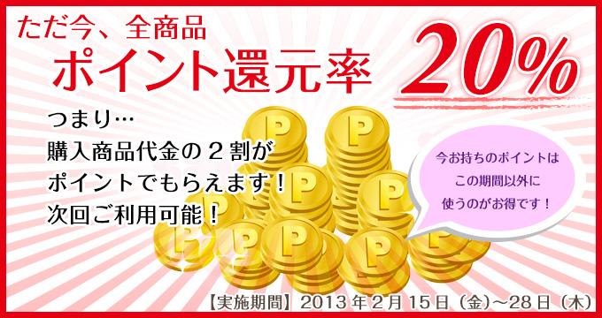 ただ今、全商品ポイント還元率20%【実施期間2013年2月15日〜28日】