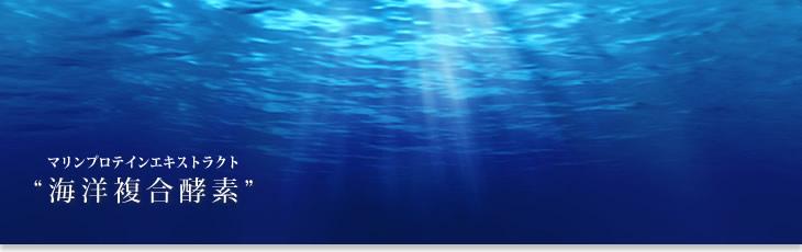 海洋複合酵素
