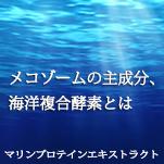 海洋複合酵素とは